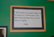 Art Solutions Testimonial 03